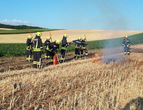 Feuerwehrübung Flurbrand