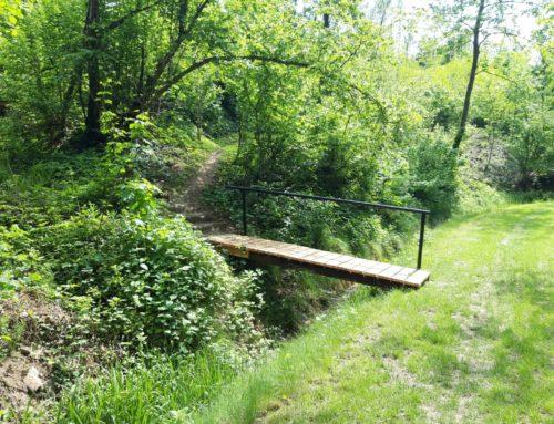 Neue Brücke in der Staglschlucht
